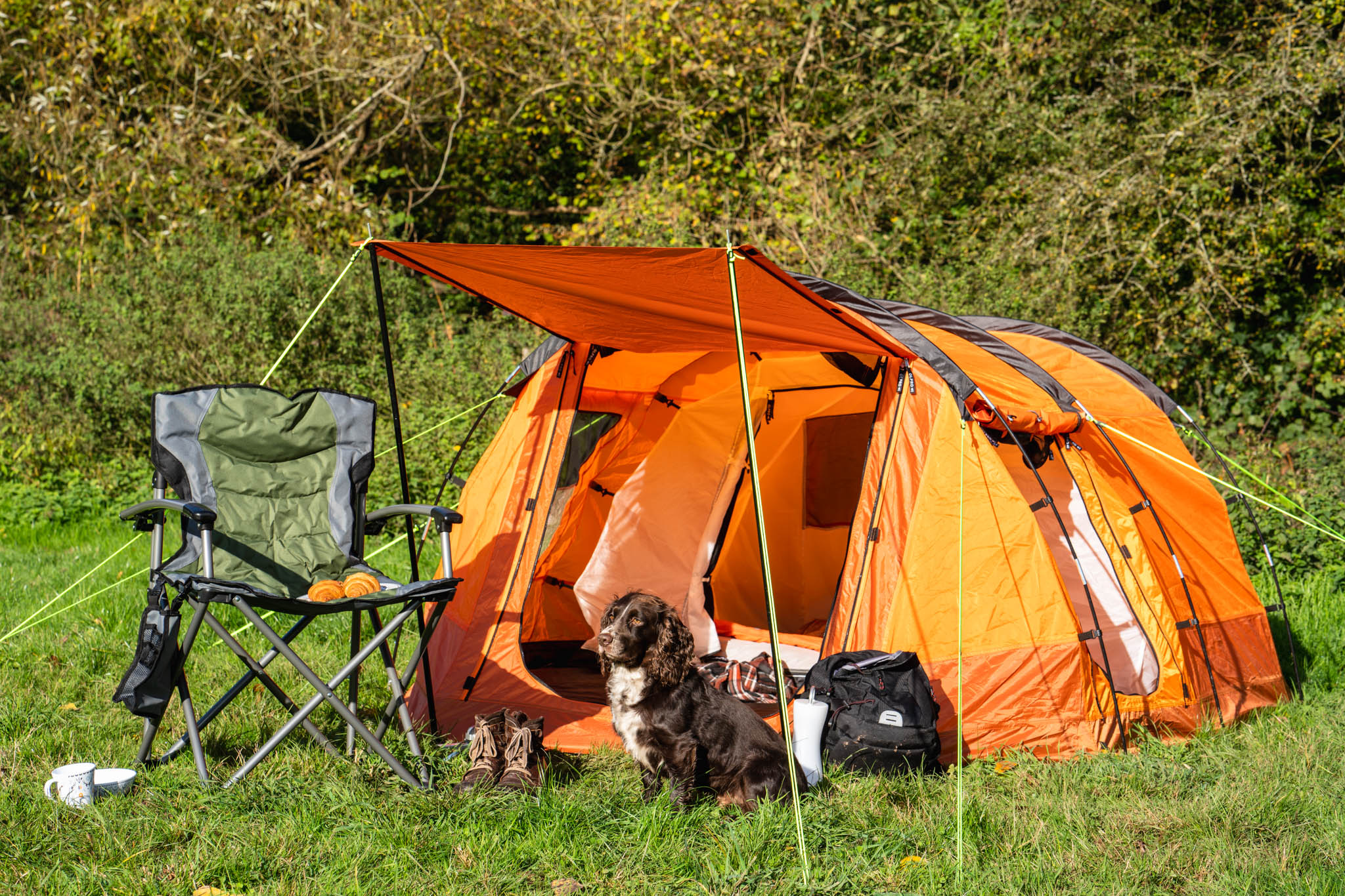orange Olpro tent with dog and camping chair