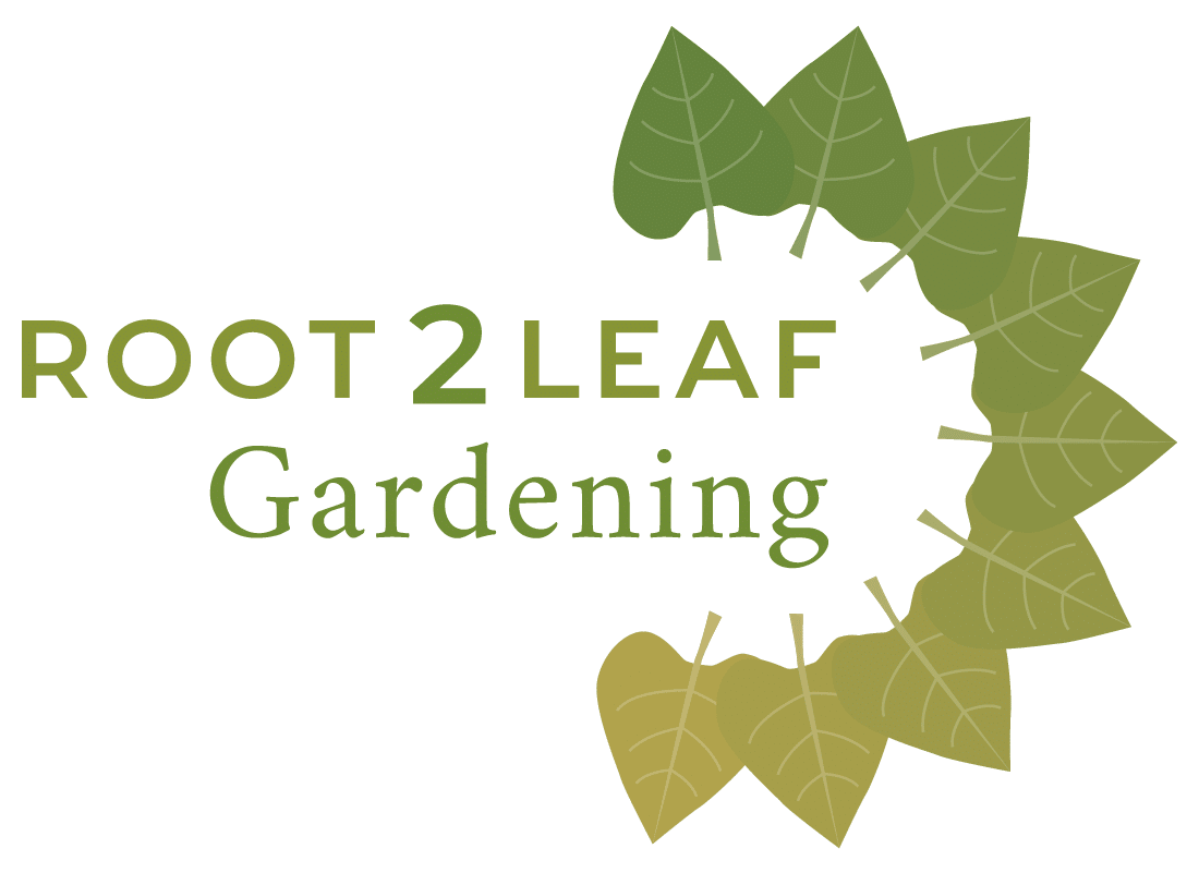 branding design green root 2 leaf logo